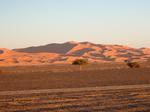 06To-the-desert11.jpg