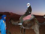 06To-the-desert16.jpg